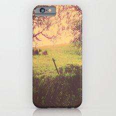 Hypnotic Fields  iPhone 6s Slim Case