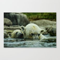 Pole Bears Mother and Little one Canvas Print