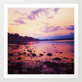 Rocky Coast of Maine Art Print
