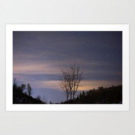Wintergreen Art Print