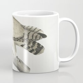 2495 Coromandel Owl Strix Coromandra26 Coffee Mug