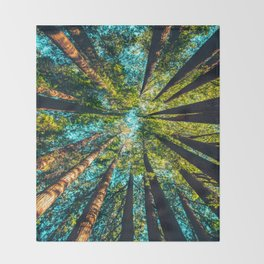 Looking Up At Trees In A Dense Forest Throw Blanket