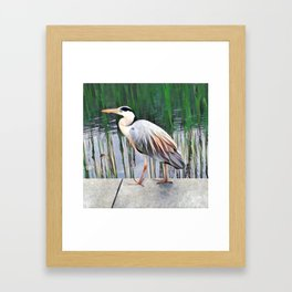 Heron in Watercolour Framed Art Print