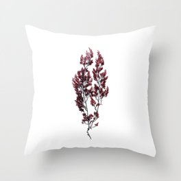 British Sea Weed Throw Pillow