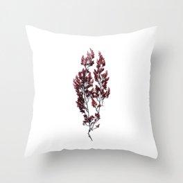 British Sea Weed Throw Pillow