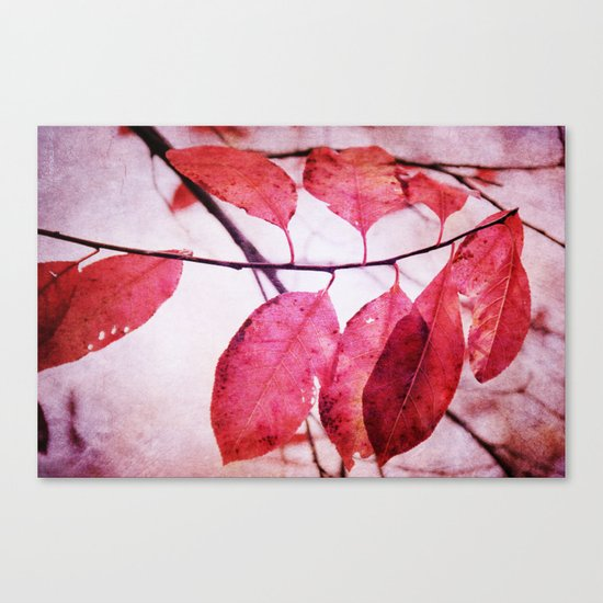 Winter's Breath is coming Canvas Print