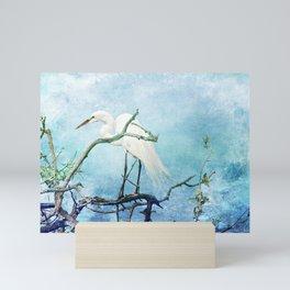 Rookery White Egret Mini Art Print