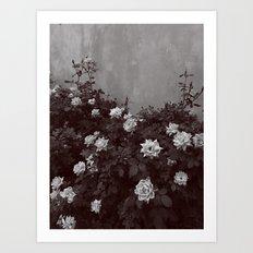 Éponine Art Print