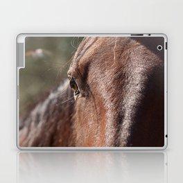 Horse's Gaze Laptop & iPad Skin