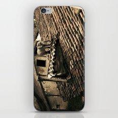 el elefante de mi vecina iPhone & iPod Skin