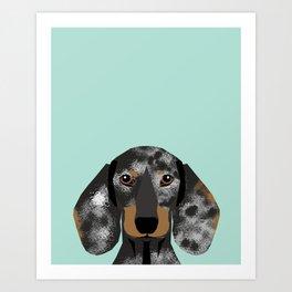 Doxie Dachshund merle dapple dog cute must have dog accessories dog gifts cute doxies dachshunds des Art Print