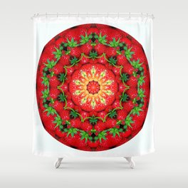 Strawberry season mandala k3 1158 Shower Curtain