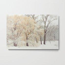 Winter Wonderland Number 3 Metal Print