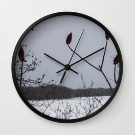 the loneliness of winter • nature photography Wall Clock