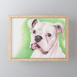 The White Boxer Framed Mini Art Print