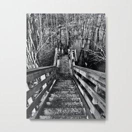 Black Creek is Flooded Metal Print