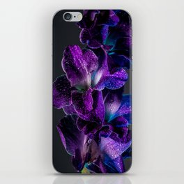 Blue and Purple  iPhone Skin
