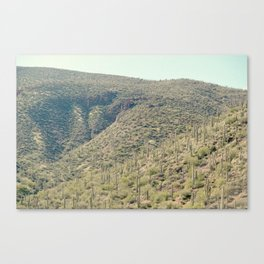 rolling cacti Canvas Print