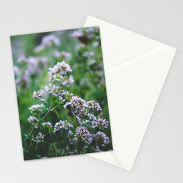 Blooming Oregano Stationery Cards