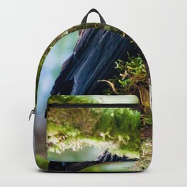 Ever Watchful Raven Backpack
