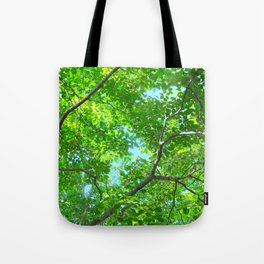 Canopy of Green, Leafy Branches with Blue Sky Tote Bag