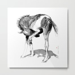 Horse (Filly) Metal Print