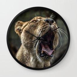 Yawning Female Lion Wall Clock
