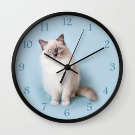 Blue eyed Ragdoll kitty sitting Wall Clock