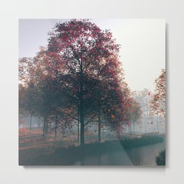 Lover of the Light Metal Print