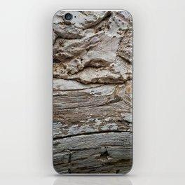 029 iPhone Skin