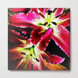 Fragrant red lilies Metal Print