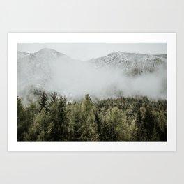 Peaks and Pines Dolomites | Colourful Travel Photography | Dolomiti, Italy (Europe) Art Print