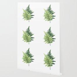 Summer Forest Ferns Wallpaper