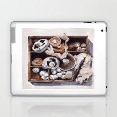 Mushroom box Laptop & iPad Skin