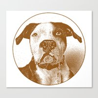 pit bull Canvas Prints featuring Pit Bull by George Peters
