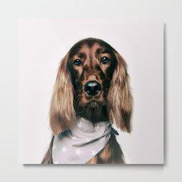 Fashionable spaniel doggo Metal Print