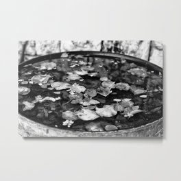 Monochrome natural elements Metal Print