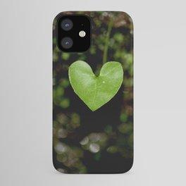 Heartfelt Nature at Hickory Canyons MDC Area (Missouri) iPhone Case