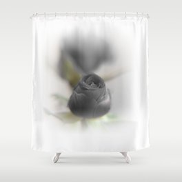 A Black Rose for your Sweetheart Shower Curtain