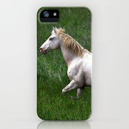 BEAUTIFUL WHITE HORSE iPhone Case