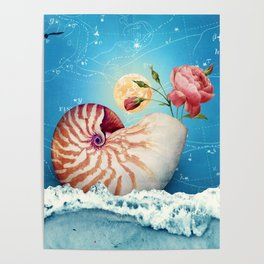 Fancy Nautilus Shell :: Fine Art Collage Poster