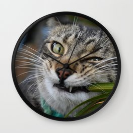 Cat Snack Wall Clock