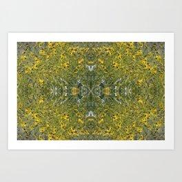 Brilliant Yellow Brittle Bush Burst Pattern Art Print