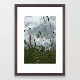 Cloudy Day at the Park Framed Art Print