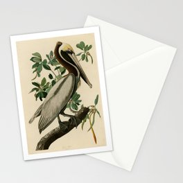 Brown Pelican, Birds of America by John James Audubon Stationery Cards
