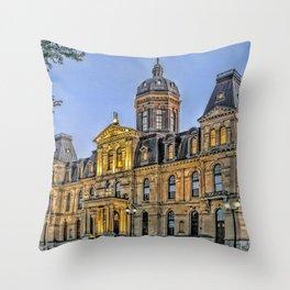 The Legislative Throw Pillow