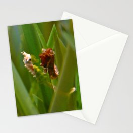 The Tryst Stationery Cards