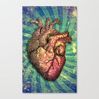 anatomical heart Canvas Prints featuring Anatomical heART by Li9z