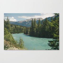 Tête Jaune Cache Canvas Print
