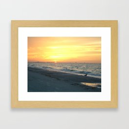 Sanibel Island Framed Art Print
